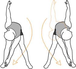 torso flexes with rotation